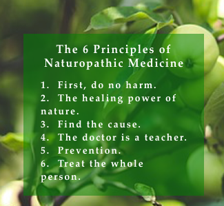 list of 6 principles of naturopathic medicine